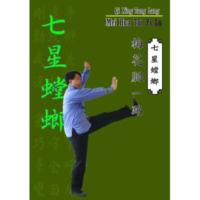 Mei Hua Tui Yi Lu