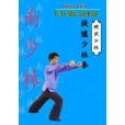 Ti Lu Shao Lin Quan(Nan Shaolin)
